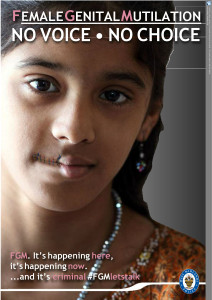 FGM poster_Layout 1[26512](2)