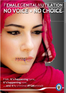 FGM poster_Layout 1[26512](6)